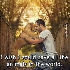 Dog Agility I wish i could save all the animals in the world Save Animals, Animals And Pets, Funny Animals, I Love Dogs, Puppy Love, Cute Dogs, Dog Quotes, Animal Quotes, Adorable Petite Fille
