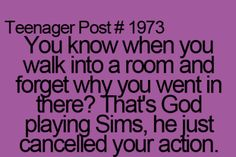 haha...Sims. Life would be so much easier if it was one big Sims game.