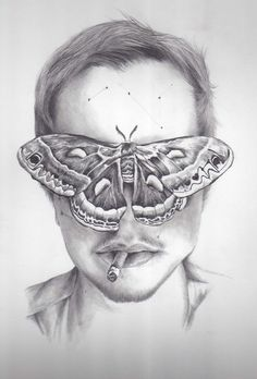 Pencil Illustrations by Kate Powell