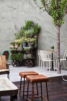Jardin variado garden/corner garden shop, garden и garden sp Flowers Perennials, Planting Flowers, Flowers Garden, Outdoor Spaces, Outdoor Living, Corner Garden, Little Gardens, Garden Shop, Living At Home