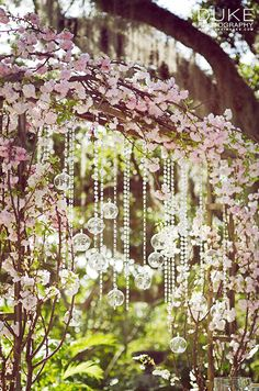 Gorgeous glass spheres are suspended from an arbor of flowering vines.