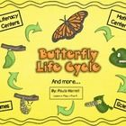 Your students will learn about the butterfly life cycle and more with this unit!  All activities have been aligned with Common Core State Standards...