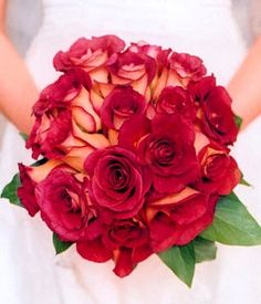 fire and ice rose bouquet - Google Search