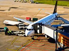 Uçak Bileti Avcısı