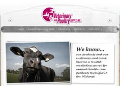 Digital Hill Launches New Website for Veterinary and Poultry Supply, Inc.