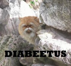 1000+ Images About Diabeetus On Pinterest  Diabetes, Can. Bad Case Signs. Road Bulgaria Signs. Drunk Signs. Bradycardia Typhoid Signs. Star Chinese Signs Of Stroke. Specific Signs Of Stroke. Red Cross Signs. Grad Party Signs Of Stroke