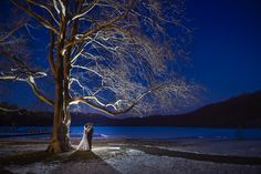 #justmarried #bride #groom #weddingday #sunset #night #tree #winter #photography #anthonyziccardistudios