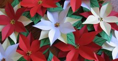 Paper Poinsettias      Here they are- Pretty Poinsettia flowers as seen on Good Morning  today. My last spot on the show- it moves to A...