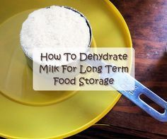 How To Dehydrate Milk For Long Term Food Storage. Save a lot of money and dehydrate your own milk. It's very easy to do and actually quite satisfying. Emergency Food, Survival Food, Prepper Food, Survival Stuff, Survival Life, Emergency Preparedness, Survival Skills, Fruit Strips, Long Term Food Storage