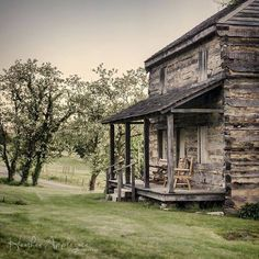 Rustic cabin quietly resting amidst the orchard