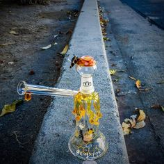 SILIKA GLASS - HONEYBEE SIDECAR OIL RIG  This cool bee rig from @silika_glass is for sale on our online HeadShop!  710SALE KINGS-PIPE.COM  #kingspipe