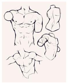 guy anatomy drawing