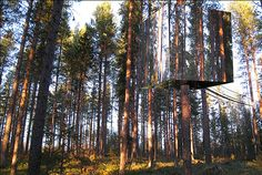 The Invisible Treehouse Hotel