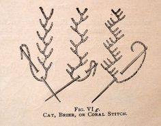 Crazy Quilt Stitches |  Cat, Brier or Coral Stitch?
