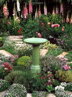 The Edible Herb Garden (Edible Garden Series): Rosalind Creasy: 9789625932910: Amazon.com: Books