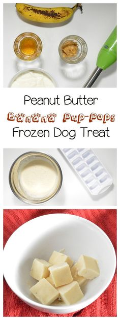 With warm days ahead, cool your pooch down with a fun and easy frozen dog treat recipe! The best part? It's actually tasty for you if you love banana ice-cream! (Cool Food For Dogs) Puppy Treats, Puppy Food, Best Dog Food, Dry Dog Food, Pet Food, Dog Treat Recipes, Dog Food Recipes, Frozen Dog Treats, Dog Cookies