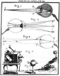 Comparative depiction of the human eye and the camera obscura. Early eighteenth-century book illustration