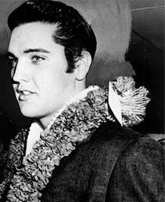 Elvis Presley 1961 benefit concert for USS Arizona memorial | Elvis arrives in Hawaii on March 25, 1961, for his benefit concert for the USS Arizona Memorial. (Used by permission, Elvis Presley Enterprises, Inc.)