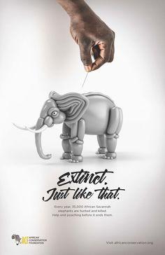 Une campagne print choc qui illustre la vulnérabilité des animaux menacés