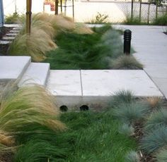 Bioswale crossing in the NACTO Urban Street Design Guide. Click image for full information & guide, and visit the slowottawa.ca boards http://www.pinterest.com/slowottawa/