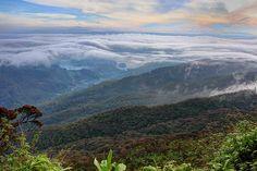 Trail to Ada's Peak (Sri Pada), Sri Lanka Adam's Peak, Buddhist Traditions, Thing 1, Rock Formations, Sri Lanka, Roots, Trail