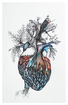 Anatomical Heart Art (this really isn't anatomically correct) Anatomical Heart Art (ce n'est vraiment pas anatomiquement correct) Medical Art, Tatoo Art, Anatomy Art, Heart Anatomy Drawing, Anatomy Tattoo, Body Art, Art Photography, Original Paintings, Illustration Art