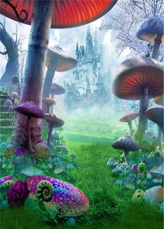 YDMY Alice in Wonderland Party Photography Backdrop-Fantasy Castle Photo Background for Kids Baby Shower Birthday Decorations Booth Studio Props Alice In Wonderland Background, Alice In Wonderland Scenes, Wonderland Party, Alice In Wonderland Aesthetic, Alice In Wonderland Mushroom, Fantasy Forest, Fantasy Castle, Fairytale Castle, Magic Forest
