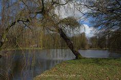 Allochtonka - życie ekspatki w Holandii: Zamek De Haar