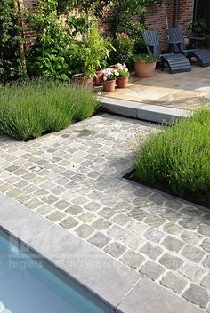 kandla grey, natuursteen, oprit, terras tegels, impermo, zandsteen, natuursteen tegels, tegels, Outdoor Gardens, Back Gardens, Small Gardens, Driveway Paving, Garden Paving, Garden Paths, Love Garden, Home And Garden, Pavement