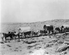In April 1847 the pioneer company of Mormons traveled from Winter Quarters, Nebraska, to Utah. The company included 143 men (including three African-American men), 3 women and 2 children. An advance party entered the Salt Lake Valley on July 22, 1847. The rest of the group entered on July 24. Planting and irrigation began immediately.