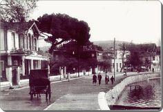 Pendik - 1950