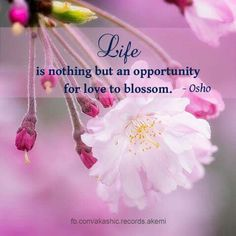 ✿⊱╮we are always on a journey. It is not about the destination. Reblossomming is the beauty of every step :))) #trust