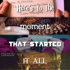 These are my life Harry Potter, Divergent, the Hunger Games, Percy Jackson