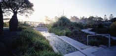 We are an award winning Sydney-based landscape architecture practice that provides a full range of services with an emphasis on the construction of high quality design Front Walkway, Path Ideas, Australian Garden, Design Competitions, Water Lilies, Water Garden, Garden Planning, Pathways, Garden Paths