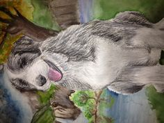 Jessica Lewis - Chalk drawing of my dog with watercolour background