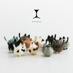 woonya【Siamese】                                                                                                                                                                                 もっと見る