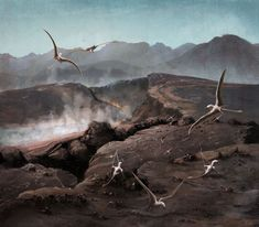 This is the Central Atlantic magmatic province, during the Triassic-Jurassic extinction, where heaps of volcanic gases were released by rifting Pangaea. These pterosaurs exploit the warm ground for nesting, oblivious to the looming extinction. Prehistoric Animals, Volcano, Fossil, World, Flora, Plants, The World, Volcanoes, Fossils