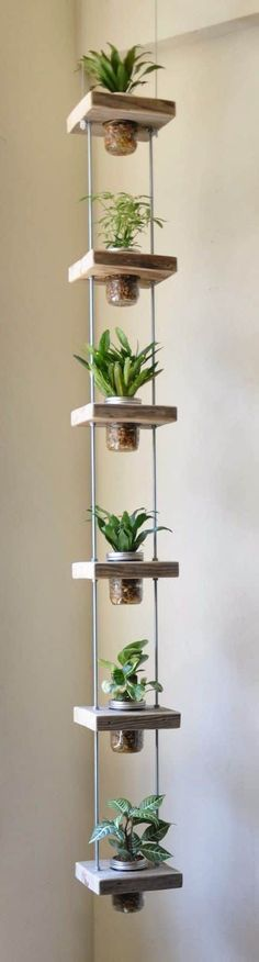 Fine 5 DIY Clever Living Walls and Vertical Garden You Must Check: Some Clever Inspirations for you