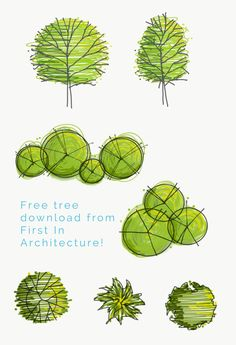 Free Tree Download – Set 10 - First In Architecture