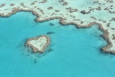 Great Barrier Reef - Australia's great natural wonder