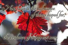 Now faith is the substance of things hoped for the evidence of things not seen.--Hebrews 11:1 KJV    http://ift.tt/2dlIsJq  #Bible #inspirational