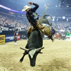. Rodeo Cowboys, Real Cowboys, Rodeo Events, Bucking Bulls, Rodeo Life, Bull Riders, Cowboy And Cowgirl, Cowgirl Style, Draw On Photos