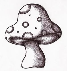 Cool Mushroom Drawings | Mushroom Drawing Image - Mushroom Drawing Picture, Graphic, & Photo