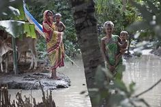 Stranded flood victims wait for help in Pokoria village, north eastern Assam state, India Free Spirit, Nepal, Asia, Culture, People, Pictures, Projects, Photos, Photo Illustration