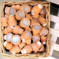 Candles in terra cotta pots.