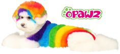 OPAWZ PET HAIR DYE is 100% animal friendly. It's bright, fashionable and unique colors work best for long lasting pet grooming.www.opawz.com