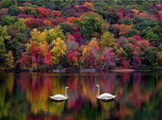 Description: Shepard Lake, Ringwood, NJ.