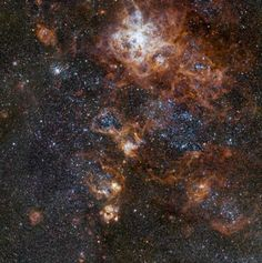 Glowing brightly about 160 000 light-years away, the Tarantula Nebula is the most spectacular feature of the Large Magellanic Cloud, a satellite galaxy to our Milky Way. Nova Vista, Star Formation, Orion Nebula, Star Cluster, Hubble Space Telescope, Light Year, Our Solar System, Deep Space, Cloud