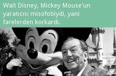 Bilgi Disney Facts, Interesting Information, Mythology, Jimin, Fun Facts, Haha, Funny Quotes, Bee, Knowledge