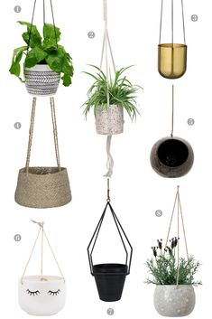 Trends: Indoor Hanging Plant Pots - Dear Designer Indoor plants are certainly having a moment right now. It seems everywhere you turn there are green fronds trailing across shelves. Bathroom Red, Bathroom Plants, Potted Plants, Indoor Plants, Patio Plants, Diy Hanging, Wall Hanging Plant Pots, Indoor Hanging Baskets, Indoor Plant Hangers